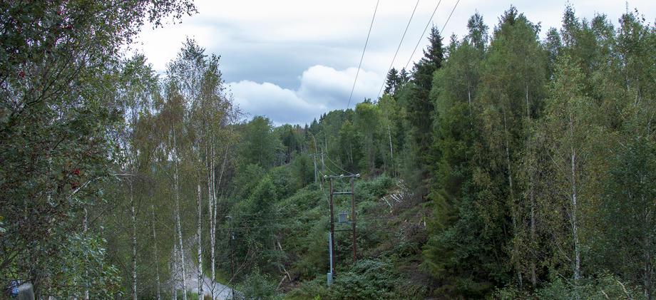 Høyspentledning i ryddet linjetrasé