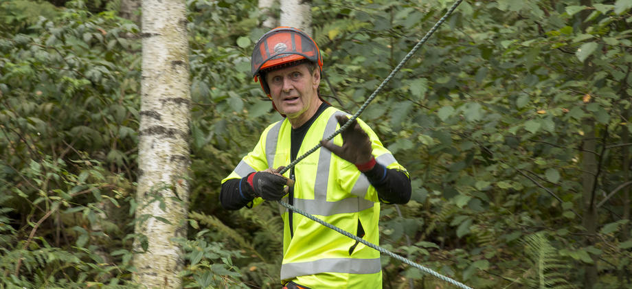 Mann i skog drar i tau.